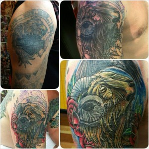 Harley cover up